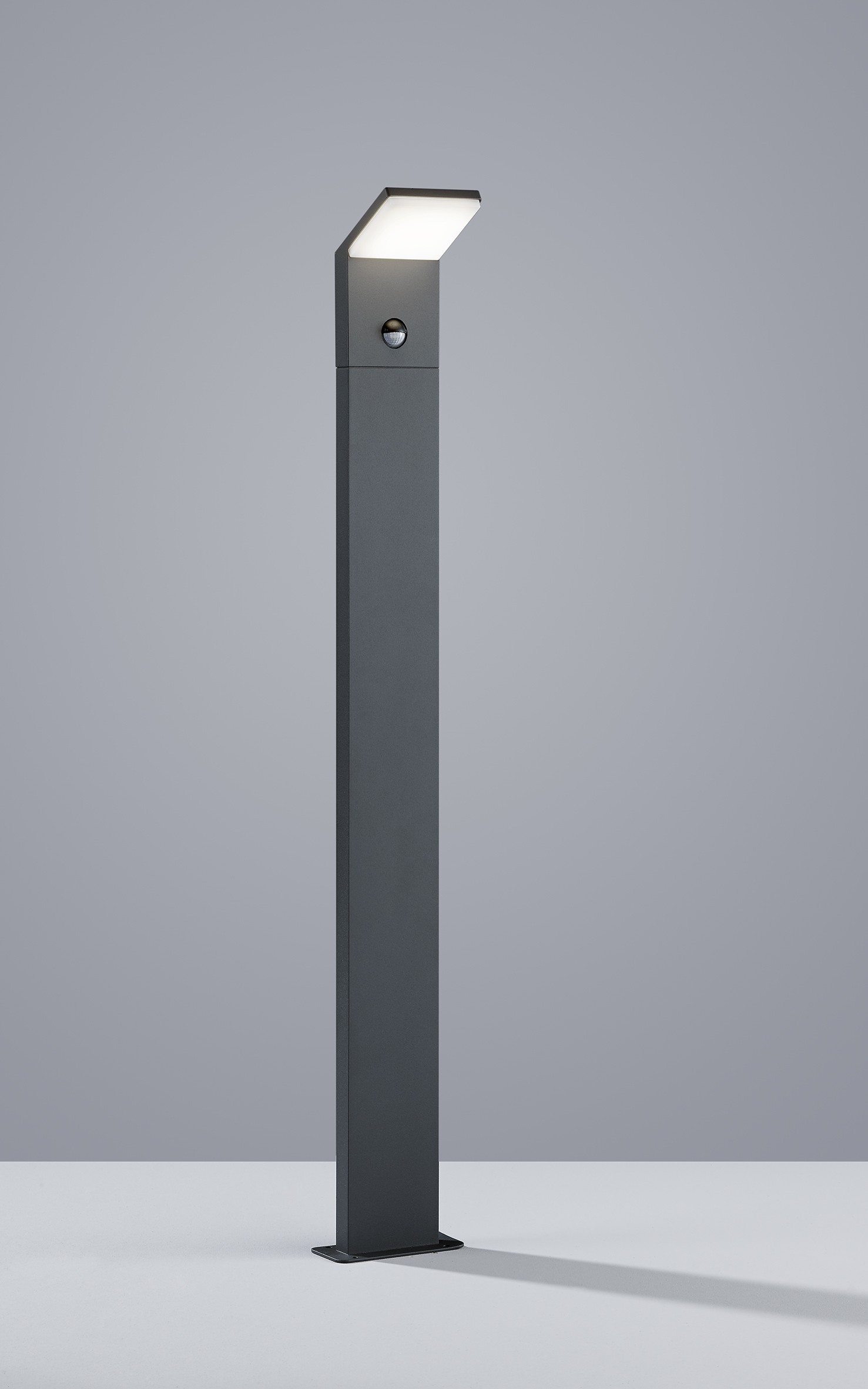 131c1154c6e7e1 Borne Pearl avec détecteur