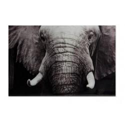 Tableau ELEPHANT