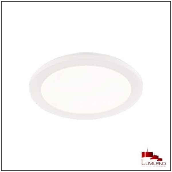 Plafonnier CAMILLUS LEDS intégrées Blanc D17