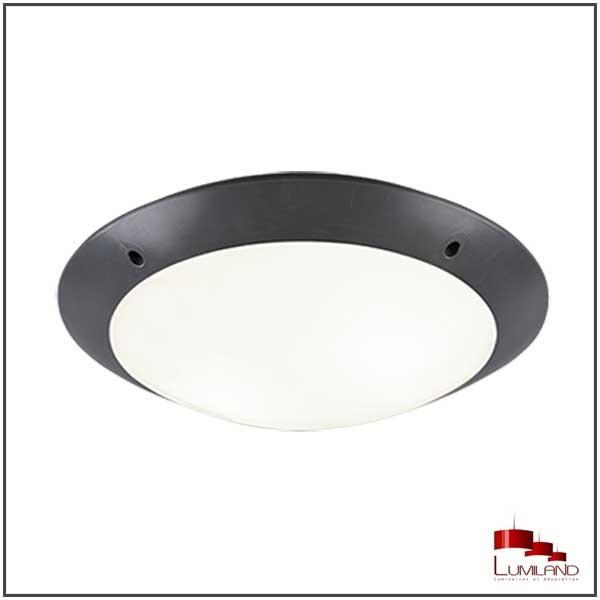 Plafonnier CAMARO, Anthrancite, 2 lumières, D33