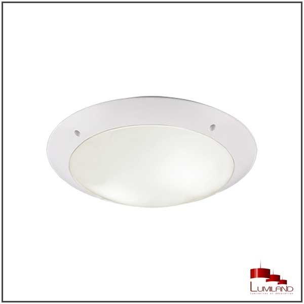 Plafonnier CAMARO, Blanc, 2 lumières, D33